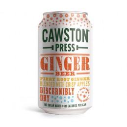 Boisson gazeuse Ginger Beer